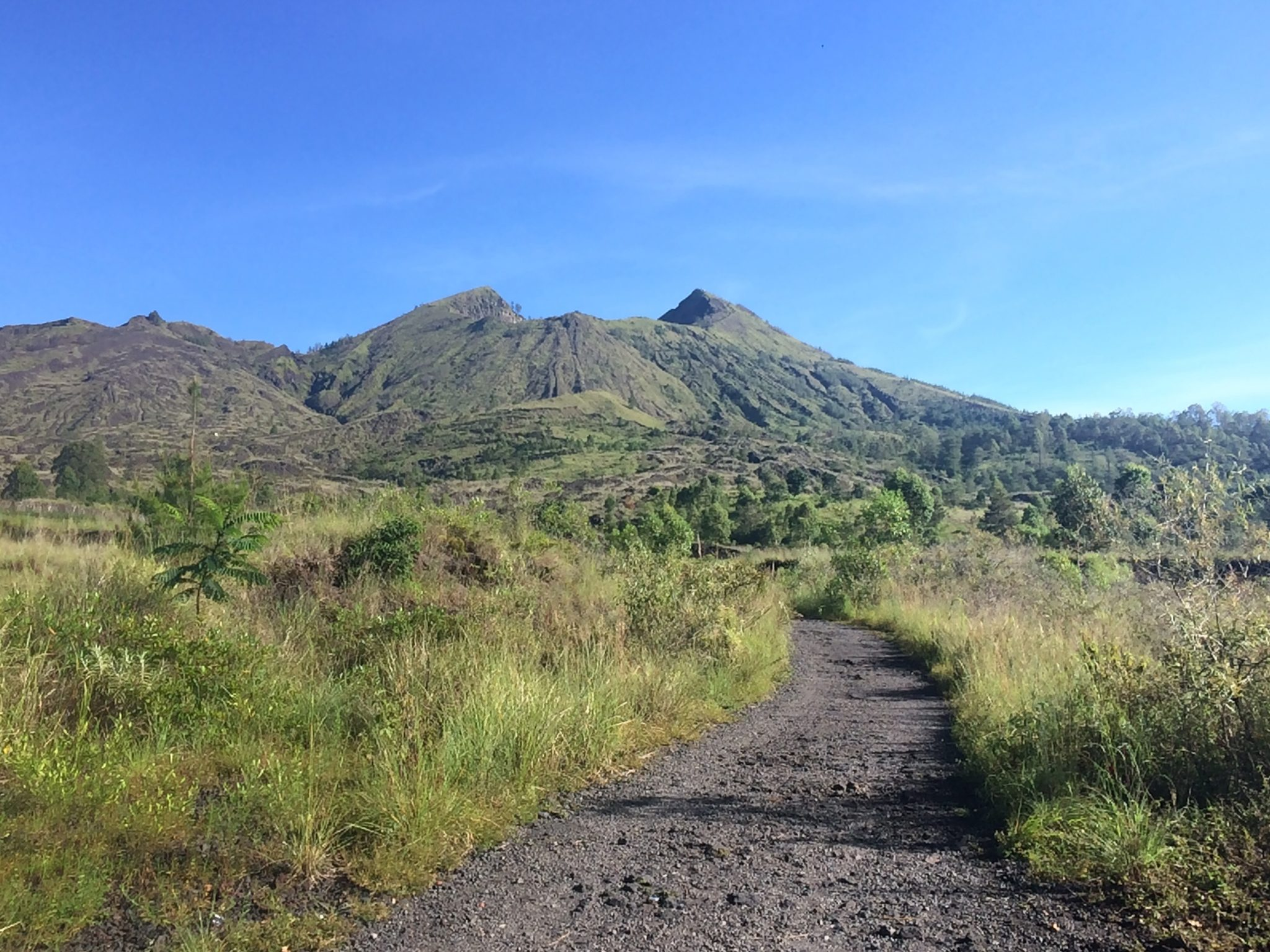 Mountain Batur road
