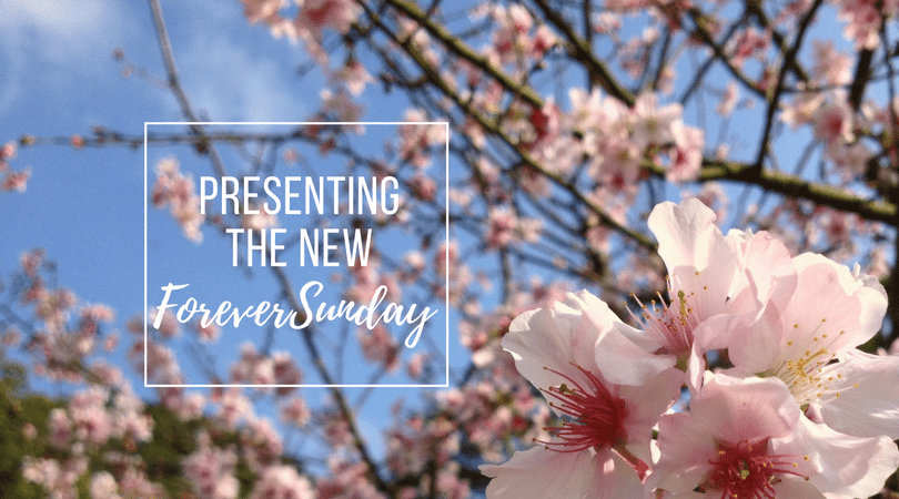 Presenting the new ForeverSunday(2)
