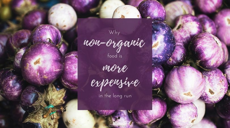 Why non organic food is more expensive in the long run