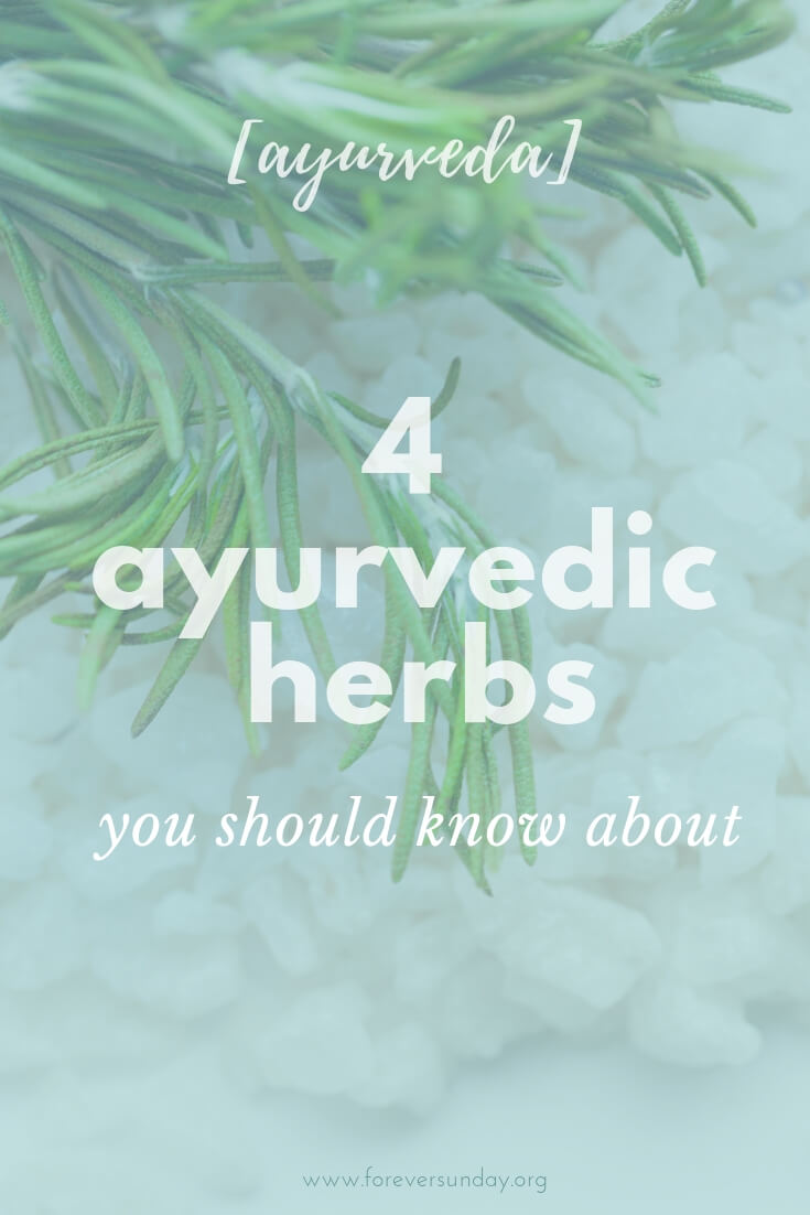 ayurvedic herbs you should know about