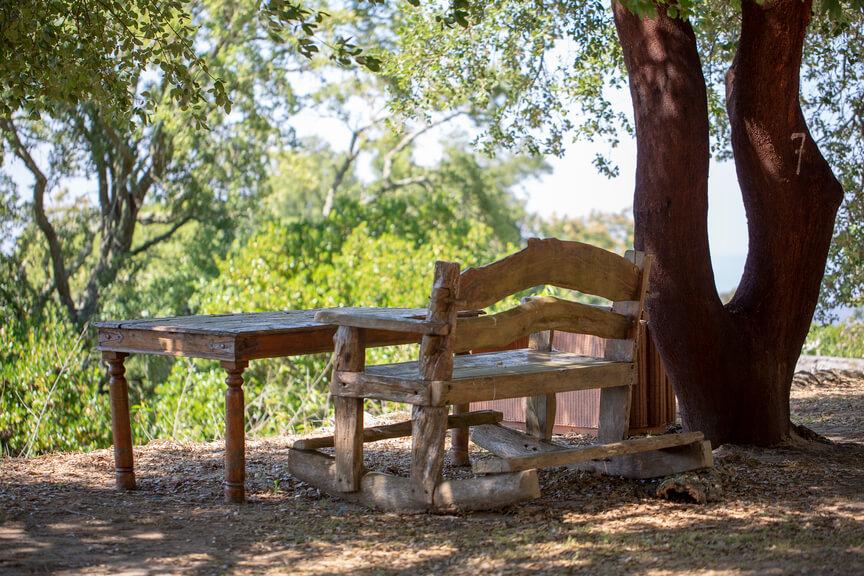 outside relax area under cork oak